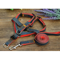 Jeans Dog Belt with Leash