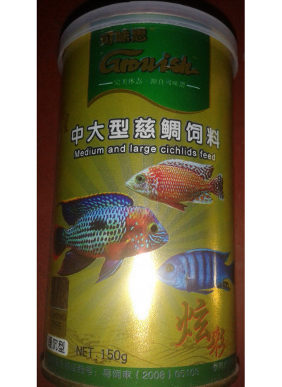 Medium and Large Cichlids Feed