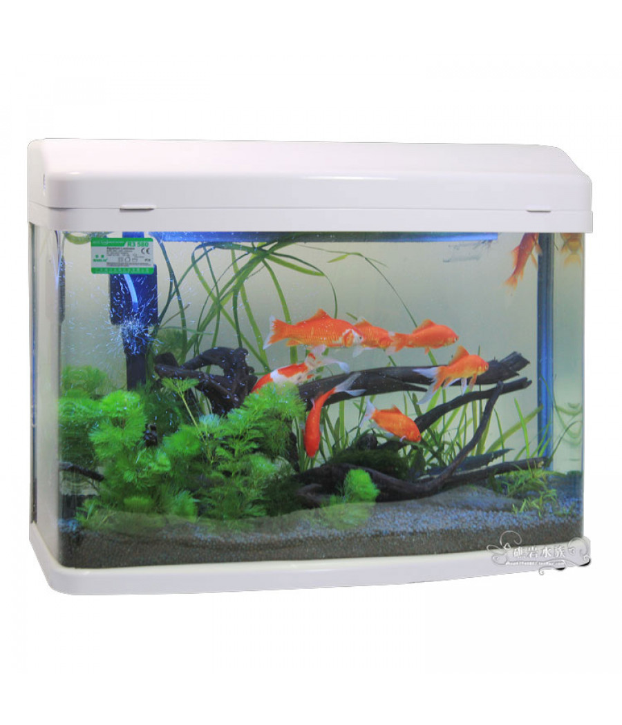 mini aquarium for your home office. Black Bedroom Furniture Sets. Home Design Ideas